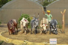 Rice-threshing-Sculpture-museu