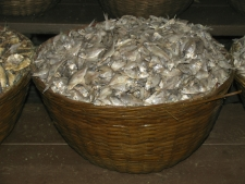Dry-Fish-for-sale