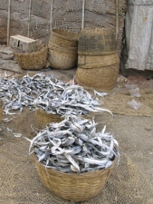 Baskets-full-of-dried-fish