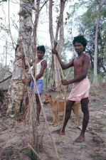Tribals-with-bows-and-dog-sett